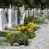 Almanya'da Yeni Bir Müslüman Mezarlığı İçin İlk Adım Atıldı