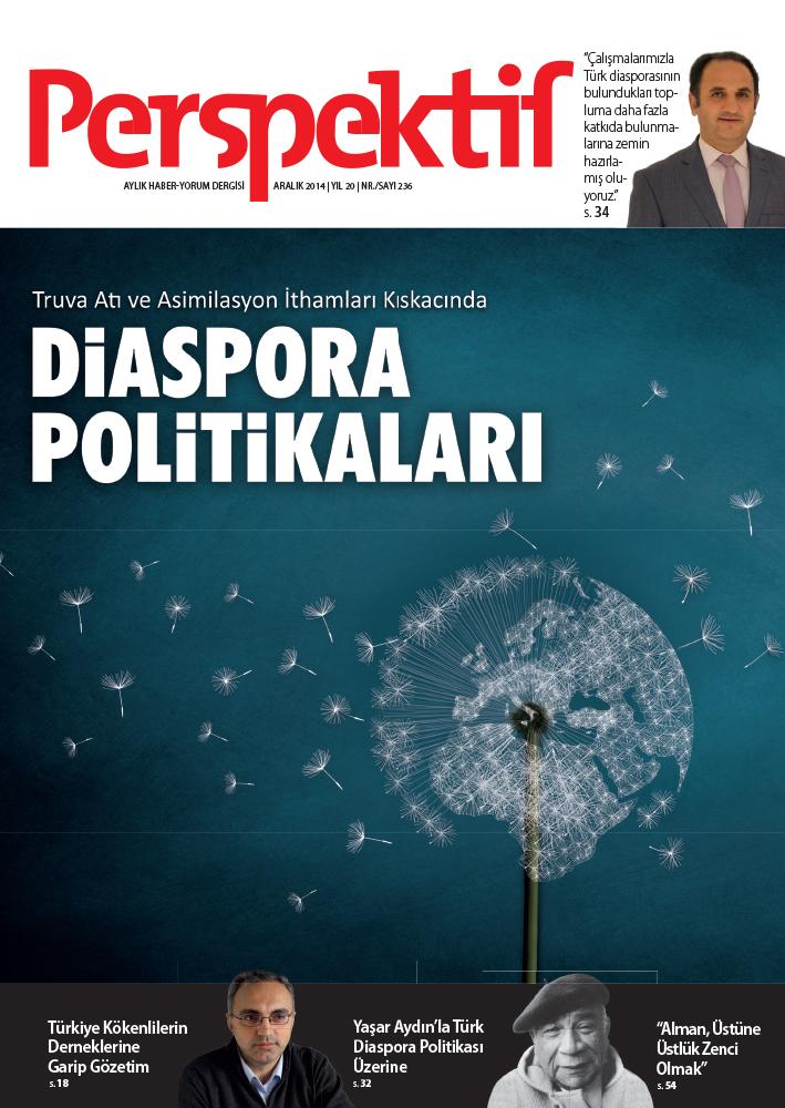 Diaspora Politikaları