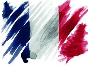 """Fransa İslamofobiyle Mücadele Kuruluşu: """"İslamofobi Kibirli Bir Nefret Şeklidir"""""""