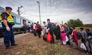 Macaristan   Bebekler Gözaltında, İltica Başvurusu Yapmak Yasak