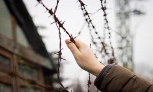 Avusturya | Sığınmacılara Toplama Merkezi Zorunluluğu