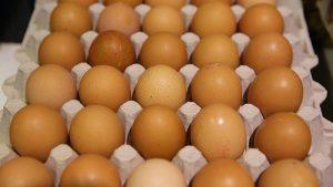 """Belçika'da """"Dioksine"""" Skandalı: 75 Bin Yumurta Toplatılıyor"""