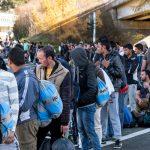 Suça Karışan Mülteciler Sınır Dışı Edilecek