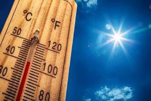 Avrupa Aşırı Sıcakların Etkisinde: Almanya'da Tarihin En Sıcak Günü