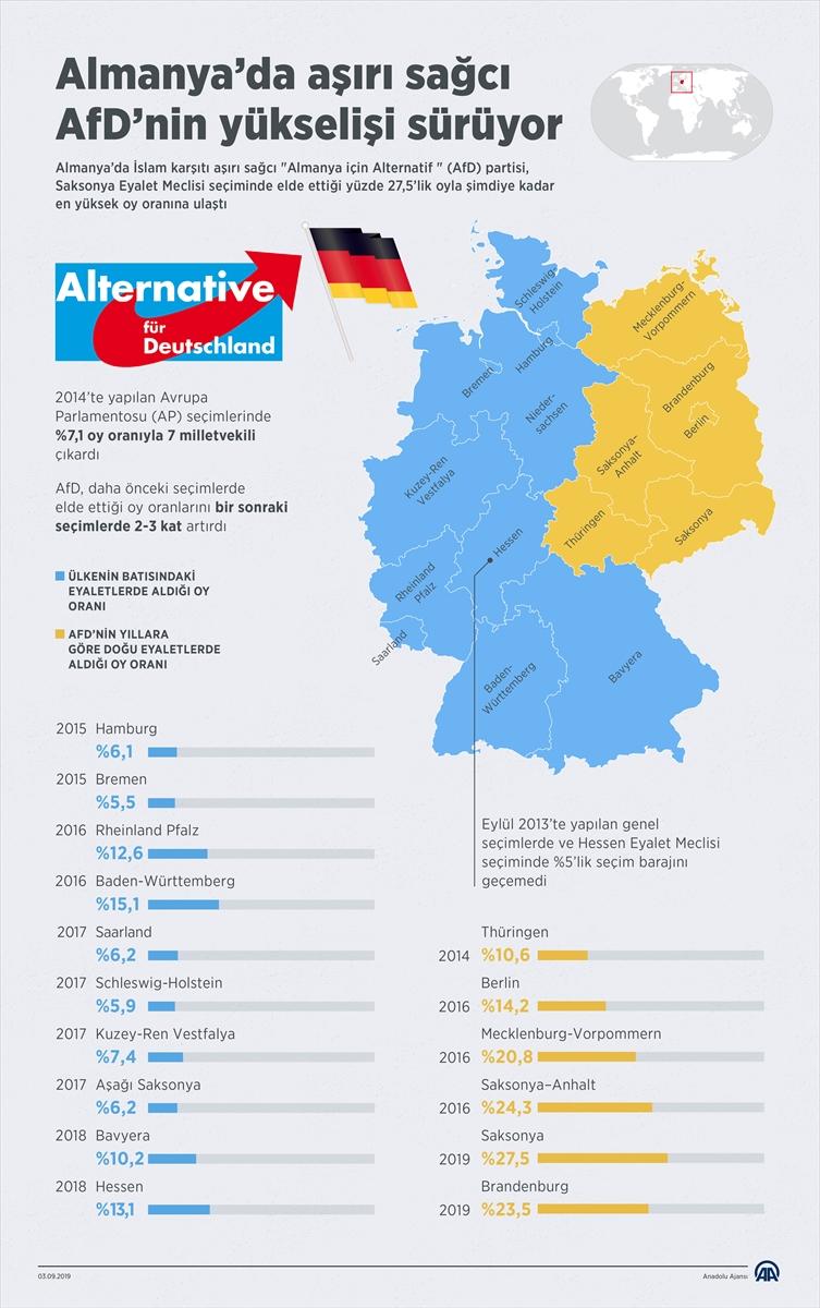 AfD Almanya