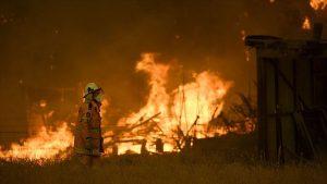 Avusturalya'da Yangın: 10 Milyon Hektar Alan Yok Oldu