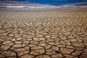 """İklim Değişikliği """"Gelecek 10 Yılın En Büyük Küresel Riski"""" Olacak"""