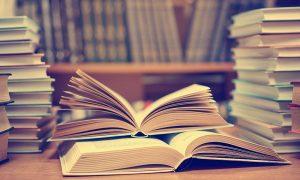 Hollanda'da Türkçe Edebiyat, Türkiye'den Göç Edenlerin Edebiyatı Mı?