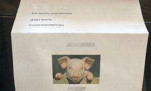 Almanya'daki Üç Camiye İslamofobik Tehdit Mektubu