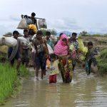 """AB'den Myanmar'a: """"Arakanlı Müslümanların Güvenli Geri Dönüşünü Sağla"""""""