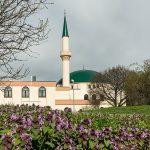 Avusturya'da İslami Temsil Kurumu: Avusturya İslam Cemaati (IGGÖ)
