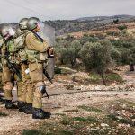 """Fransa'daki Yeşiller Partisi: """"İsrail'in Yerleşim Politikası Bölgenin Güvenliğini Tehdit Ediyor"""""""