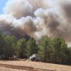 Türkiye'de Devam Eden Orman Yangınlarıyla Mücadeleye AB'den Destek